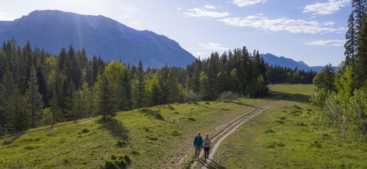 Mature couple walk on trail through grassy meadow